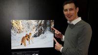 Wildlife Photographer of the Year im Museum Mensch und Natur